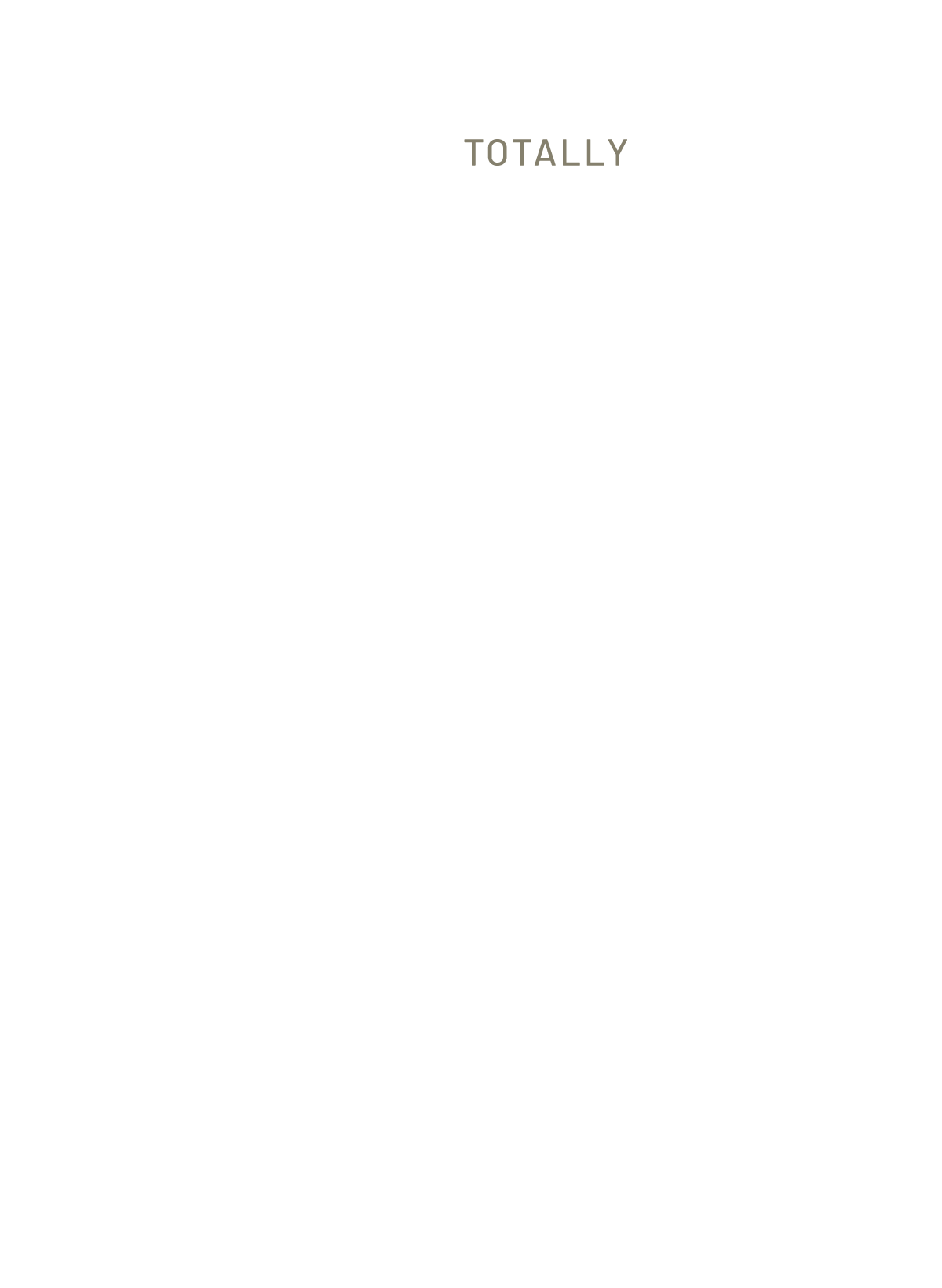 rustiguitars custom guitars paradox project
