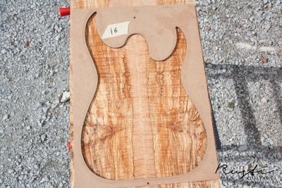 Rusti guitars - Spalted Flamed Maple